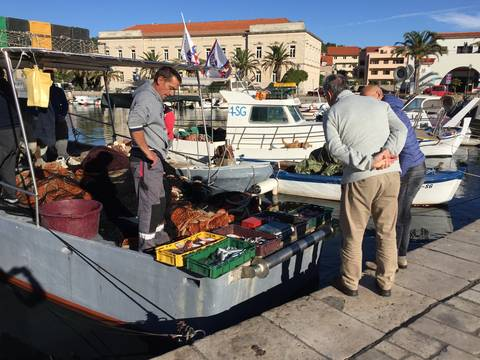 Image Title: Fresh catch of the morning in the village of Stari Grad on the island of Hvar. [Photo: Open Door Travelers]