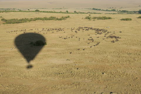 Image Title: Balloon Silhouette over a confusion (herd) of Wildebeests and a dazzle (herd) of Zebras. [Photo: Open Door Travelers]