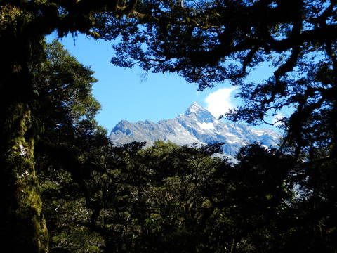 Image Title: Mt Lyttle from the Routeburn Track. [Photo: Open Door Travelers]